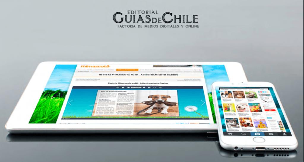Guias de Chile desing