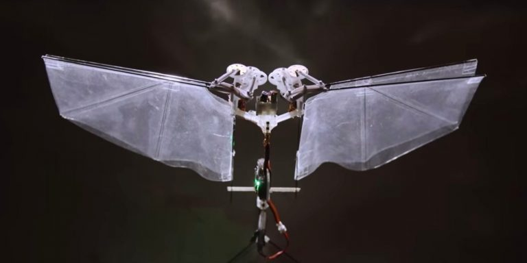 Robots que vuelan similares a moscas y abejas
